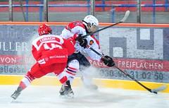 Eisbären Juniors Berlin vs. Junghaie, 01.03.2015