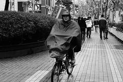 DSC_0077 (tamas.doczi) Tags: china nikon shanghai jingan 中国 上海 d3200 静安区