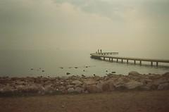 (Ulysses') Tags: park film analog 35mm foto analogue yashica sahil f35 kodak200 izmit seka novacam