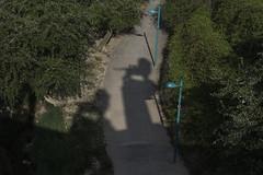 02 Sombras (Photo Sonntags) Tags: sombras zaragoza puentedepiedra lenrampante smbolo pedestal lvm juegolvm haiku