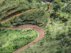 Caminho da Serra do Curral - Belo Horizonte - MG (natacia.disantos) Tags: serradocurral belohorizonte minasgerais brasil caminhos focalpoint2