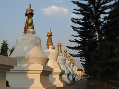 IMG_2507 (Sasha India) Tags: india buddhism karnataka indien hindistan buddhismus 印度 भारत littletibet הודו 인도 இந்தியா الهند буддизм هندوستان индия ινδία індія карнатака հնդկաստան אינדיע อินเดีย ભારત ინდოეთში
