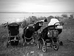SeaTrek--TNG (the mindful fox) Tags: ocean blackandwhite bw seaside richmond oceanview fraserriver steveston strollers straitofgeorgia garrypointpark georgiastrait babystrollers