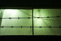 L1006886c (haru__q) Tags: leica wire barbedwire m8 jupiter12 jupiter barbed 有刺鉄線