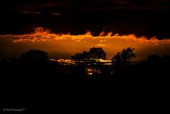 DSC_0229 (timmie_winch) Tags: nikon nikond3000 d3000 august august2016 2016 sun sunset sunsetsuffolk sunsetoversuffolkcountryside sunsetovercornfields sunsetovercornfield silhouette 18105mm 18105vr nikon18105mmvrlens shadows golden goldenhour goldenlight elliedunn ellie eleanordunn ells eleanor ellsdunn dunn landscape landscapephotography landscapephotographer naturephotographer naturephotography nature timwinchphotography tim timwinch winch debenham ip14 suffolk