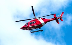 Arcft-1.jpg (Red Bellied Helicopter Female) (luc_pic) Tags: canada aviation helicopter d500 flyby coastgaurd