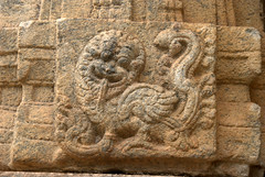 Mythical animal made of Lion and Peacock (VinayakH) Tags: talakad karnataka india temple hindu chola gangadynasty hoysala carvings vaidyeshvara kirtinarayana