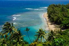 Ke'e Beach (HikerDude24) Tags: kauai hawaii outdoors seascape ocean water beach keebeach trees tropical reef kalalau kalalautrail nikon d5100 landscape
