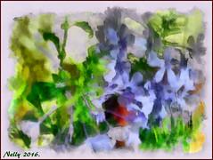 *Summer...flowers!* (MONKEY50) Tags: flowers blue plant green art nature digital soe plumbago hypothetical musictomyeyes autofocus artdigital shockofthenew flickraward awardtree pentaxart contactgroups exoticimage netartii pentaxflickraward