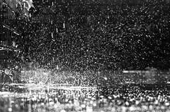 Dance of rain!! (ashik mahmud 1847) Tags: water rain bokeh splash nikkor bangladesh d5100