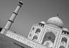 Taj Mahal 183 (David OMalley) Tags: world india heritage river site tomb taj mahal agra unesco mausoleum shah pradesh uttar jahan mughal mumtaz yamuna