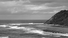 Shelly Beach in monochrome (Merrillie) Tags: nikon nature water d5500 nswcentralcoast newsouthwales sea nsw beach monochrome centralcoastnsw shellybeach blackandwhite photography landscape outdoors waterscape waves centralcoast seascape australia