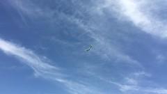 IMG_0545 (Mesa Arizona Basin 115/116) Tags: basin 115 116 basin115 basin116 mesa az arizona rc plane model flying fly guys flyguys