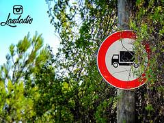 Divieto (donatolaudadio) Tags: divieto transito strada selva fasano cartello