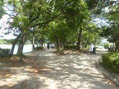 Jp16-Fukuoka-Lac-Parc Ohori (3) (jbeaulieu) Tags: japon fukuoka parc ohori lac