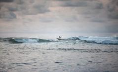 paddle surf (Sitoo) Tags: canon70200f28l clouds cloudy mar meakoz nublado olas paddlesurf sea silhouette silueta surf waves cantabrico
