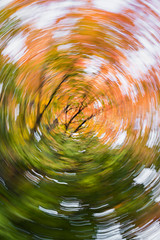 Virtigo (the real digibot) Tags: motion blur autumn forest trees leaves fall maple sugarmaple orange green swirle isthmus
