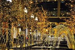 Fountains at City Creek (picbrande) Tags: christmas temple lights utah holidays saltlakecity slc templelights