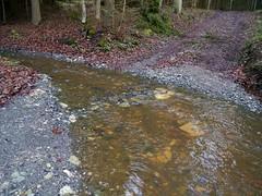 Furt durch die Gns  /   Ford through Guens creek (rudi_valtiner) Tags: autumn fall water creek austria sterreich wasser herbst bach autriche burgenland bernstein gns pechgraben