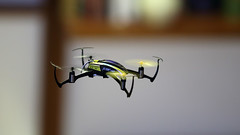 (chicco_u) Tags: flight indoor micro blade nano qx drone eflite quadricopter quadricotte