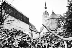 2015-02-14-Stralsund-20150214-171302-i213-p0050-_Bearbeitet1385-ILCE-6000-24_mm-.jpg