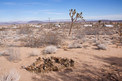 Yucca Valley, CA (ChrisGoldNY) Tags: california abandoned field landscape forsale desert joshuatree albumcover bookcover desolate deserted bookcovers albumcovers licensing yuccavalley chrisgoldny chrisgoldberg chrisgold chrisgoldphoto chrisgoldphotos