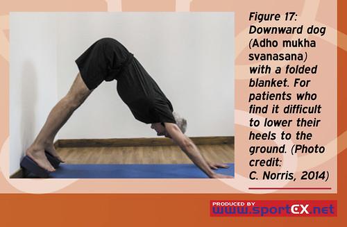 43DY25_5 (sportEX journals) Tags: yoga rehabilitation massagetherapy sportex sportsinjury sportsmassage sportstherapy sportexdynamics strengtheningexercises sportsrehabilitation