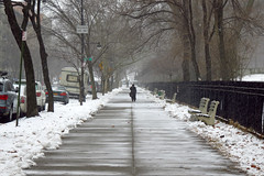 Morningside Park As the Storm Begins (jschumacher) Tags: nyc snow vanishingpoint harlem morningsidepark