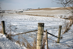 Corner Post_5077 (rjmonner) Tags: brown white snow field rural corner standing wire midwest post braces farm steel country farming guard farmland barbedwire backroads brace rolling countryroad sentinel dormant lightsnow sentry outbuildings jacksoncounty cornbelt easterniowa gravelroads wintercolor rollingfarmland fencefriday