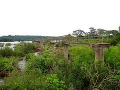 Iguazu (Arg)-124
