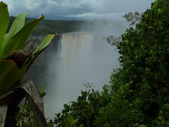 The Misty Falls