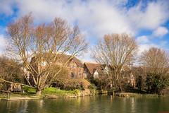 Chesterton (aljones27) Tags: trees cambridge tree river cam cambridgeshire