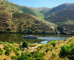 cruising down the Douro (ekelly80) Tags: portugal june2016 summer vilanovadefozca guarda casadorio quintadovallado wine winecountry dourovalley douroriver beautiful scenery view hills valley mountain boat cruiseboat water river sun light morning reflection below