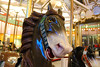 Coney Island's Historic B&B Carousell (Kim Lofgren Photography) Tags: nyc carnival horse newyork brooklyn vintage coneyisland ride landmark carousel historic boardwalk amusementpark lunapark 1906 merrygoround carouselhorse bbcarousell charlescarmel
