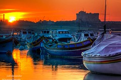 Fishing boats in Birzebuggia harbour, Malta (NeilAlexanderD) Tags: ocean travel blue sunset sea sunlight seascape color colour water horizontal port outdoors coast harbor boat fishing europe mediterranean european day colours harbour transport noone peaceful tranquility nobody malta calm coastal bow transportation boating oceans maltese fishingboat ports harbors seas stationary harbours tranquilscene birzebbuga anchored moored buildingexterior traveldestination birzebuggia birebbua