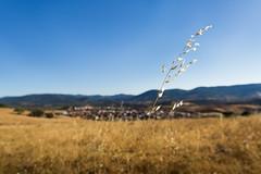 Summer breeze (Sam Garca GA.) Tags: losnavalucillos navalucillos spain castilla lamancha pueblo village summer breeze