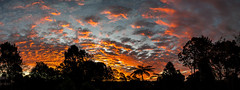 Sunset Over Maleny Panorama (Serendigity) Tags: trees winter queensland sunset australia fern maleny sky panorama hinterland sunshinecoast clouds