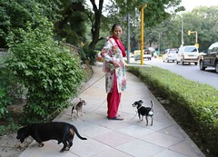 Working Life (Mayank Austen Soofi) Tags: delhi walla maid working life met her last evening she said works housekeeper private bungalow walking dogs was part job somewhere