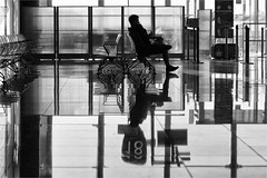 Wait for the strike (zilverbat.) Tags: streetphotography streetlife streetcandid streetshot image airport blackwhitephotos blackandwhite scenery dutch reflections reflection travel strike people portrait streetscene portret peopleinthecity photography straatportret zwartwitfotografie zwartwit monochrome noir blanc timelife tourist town tourism urbanlife urban traveller chairs sit bence