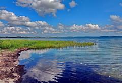 Spiegelung (Wunderlich, Olga) Tags: greifswalderbodden blau grn himmel wolken rgen insel mecklenburgvorpommern deutschland schilf wasser spiegelung landschaft landscape natur