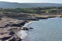 (orientalizing) Tags: aphendrika coast cyprus dipkarpazpeninsula karpas karpasia karpasspeninsula landscape northeasterncyprus northerncyprus rizokarpassoregion seascape shore splashing turkishoccupiedcyprus