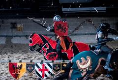 JPB_1975 (jobo1009) Tags: toronto nikon medieval d750 times swords jousting iso6400