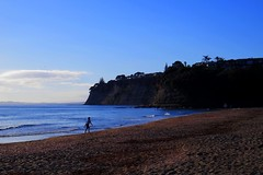 Long Bay Beach - Jan 2015 (SKR_Photography) Tags: newzealand beach bay long surf january earlymorning auckland nz 8am downunder eastcoast silouettes longbay surfsup 2015 landofthelongwhitecloud dogsonanodogbeach