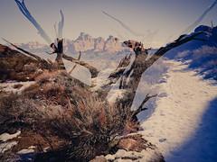 strayfoto_2014_976 (strayfoto) Tags: travel winter southwest outdoors photography utah sandstone desert hiking arches canyonlands moab redrock grdigital ricoh ricohgr ricohdigital quinnhall campvibes strayfoto