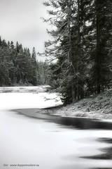 20141127067735 (koppomcolors) Tags: winter lake forest vinter sweden skog sverige scandinavia värmland varmland koppomcolors