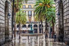 Plaça Reial / Plaza Real, Barcelona 8596