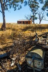 Farmhouse-2 (red snapper 205) Tags: tree abandoned farmhouse gum clare wine ruin valley eucalyptus southaustralia clarevalley grapeslandscape