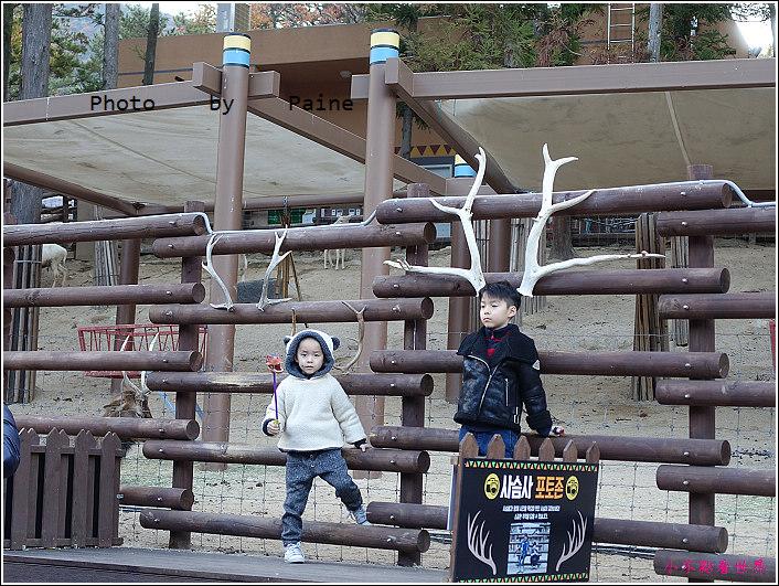 釜山動物園 (36).JPG