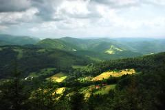 Fairy charm of Polish mountains (pawel.suchecki) Tags: light summer mountain mountains green beauty forest landscape scenery peace poland fairy harmony serenity ethereal idyll fabulous enchantment respite beskids ywiecbeskids zywiecbeskids