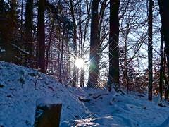 Made by Soul (broombesoom) Tags: schnee winter snow tree forest germany landscape deutschland path breath landschaft wald baum weg winterwalk wintersun winterspaziergang atme wintersonne